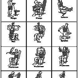 exercice banc de musculation